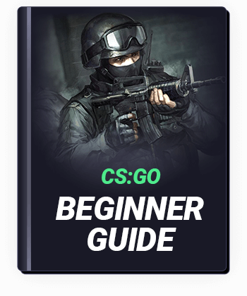 CS GO Beginner Guide