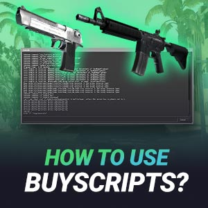CS GO Buyscript Guide